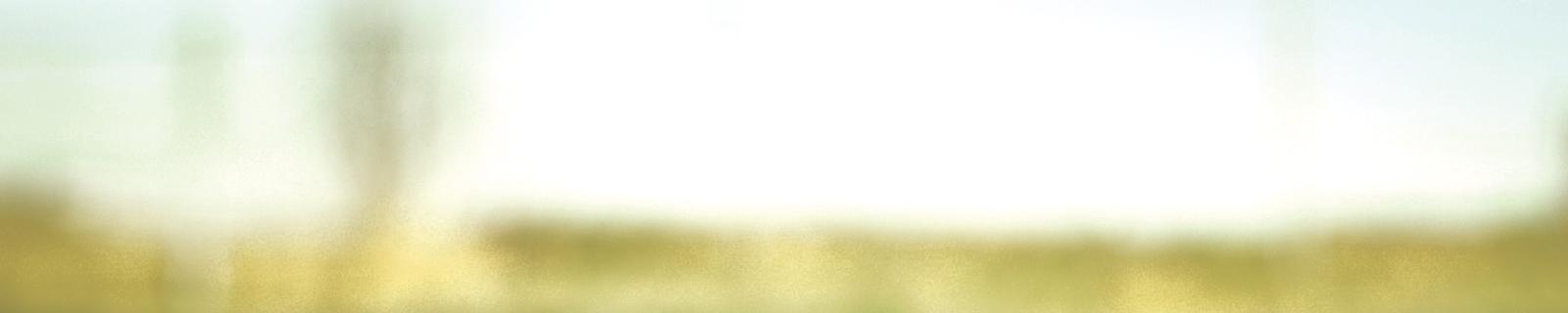 -20% sul secondo capo meno caro saldi collezione autunno inverno 2018 e primavera estate 2019